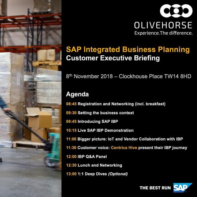 SAP IBP Exec Briefing